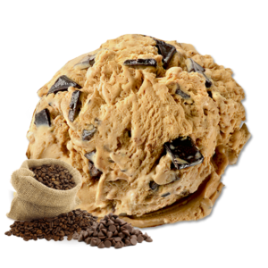 Coffee Mocha Chips Gelato